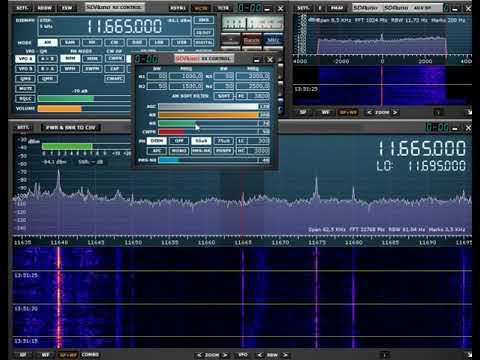 RTM Wai FM 13:39 Utc 11665 Khz 11 September 2019