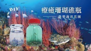 療癒瓶中世界----【珊瑚瓶】(漂亮比例版)