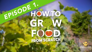 EP. 1 - HOW TO GROW FOOD FROM SCRATCH