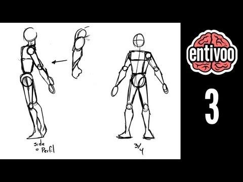 aprende-a-dibujar-el-esqueleto-y-sus-proporciones---parte-2