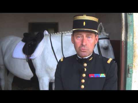 Le Cadre Noir : L'équitation de tradition française