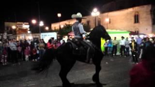 forma de enseñar a bailar un caballo Arandas Jalisco Fiestas