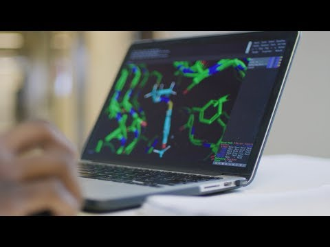 usf-health---ms-in-bioinformatics-&-computational-biology