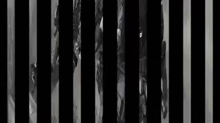 Видео про наёмников фудшоу