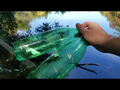 Testing Pond Water, Ammonia, Phosphate, Nitrate, Hardness, Etc