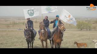 Виставка Тобетов і племінний огляд Тази р. в Алмати