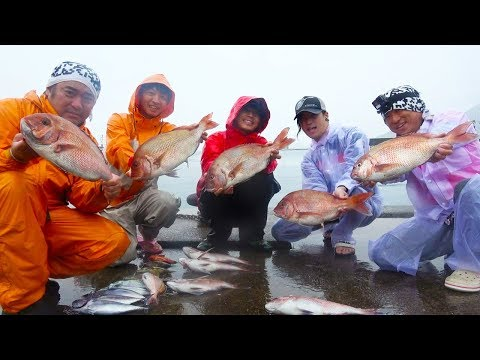 真鯛が爆釣‼他にもたくさん釣れました‼