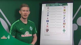 WIESENHOF: Werder Experten-Tipp 30. Spieltag 16/17