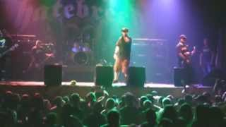 Hatebreed-Boundless