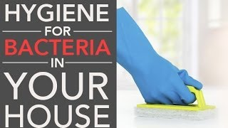 Hygiene for Bacteria in Your House