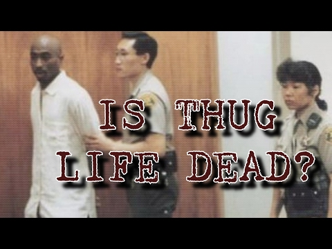 IS THUG LIFE DEAD? -  RARE 2PAC PRISON ESSAY ON HIS EVOLUTION FROM THUG N*GGA TO A BOSS PLAYA