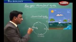 AP & TS State Board Syllabus | Class 9th Biology | Bio Geo Chemical Cycles Live Video