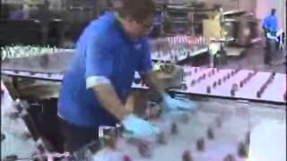 Процесс производства заливного триплекса на лиинии UVEKOL(Производство заливного триплекса в больших объемах производится на специальном оборудовании. Для небеоль..., 2014-01-31T11:58:43.000Z)