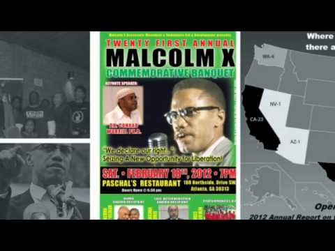 Malcolm X Grassroots Movement