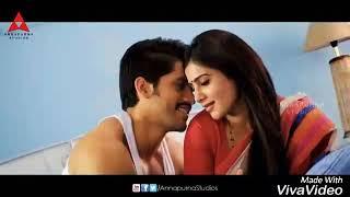 Samantha Chaitanya~ A perfect love story ❤
