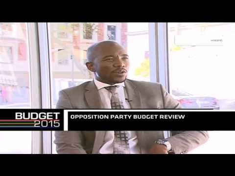 Democratic Alliance insights on S. Africa's Budget 2015