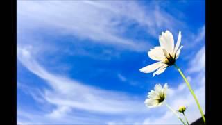チャイコフスキー: ピアノ協奏曲第1番 変ロ短調 Op.23:第1楽章[ナクソ...