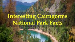 Interesting Cairngorms National Park Facts