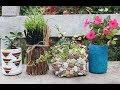 4 Amazing planter ideas from waste plastic bottles /unique planter ideas /DIY Plant pots