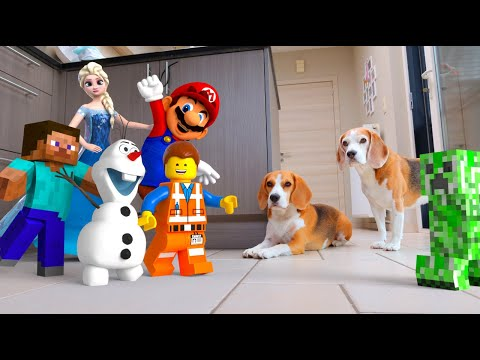 REAL LIFE MINECRAFT , MARIO , FROZEN & LEGO COMPILATION : FUNNY DOGS LOUIE & MARIE