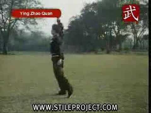 Kung Fu Eagle Style Martial Arts - Shaolin...