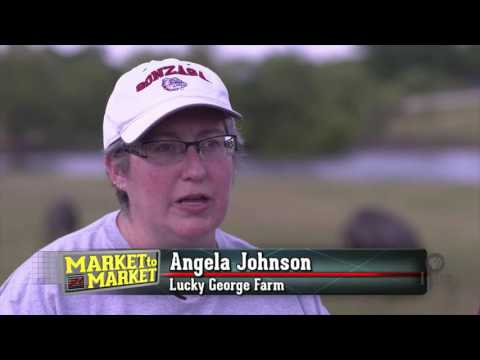 Market to Market (September 30, 2016)