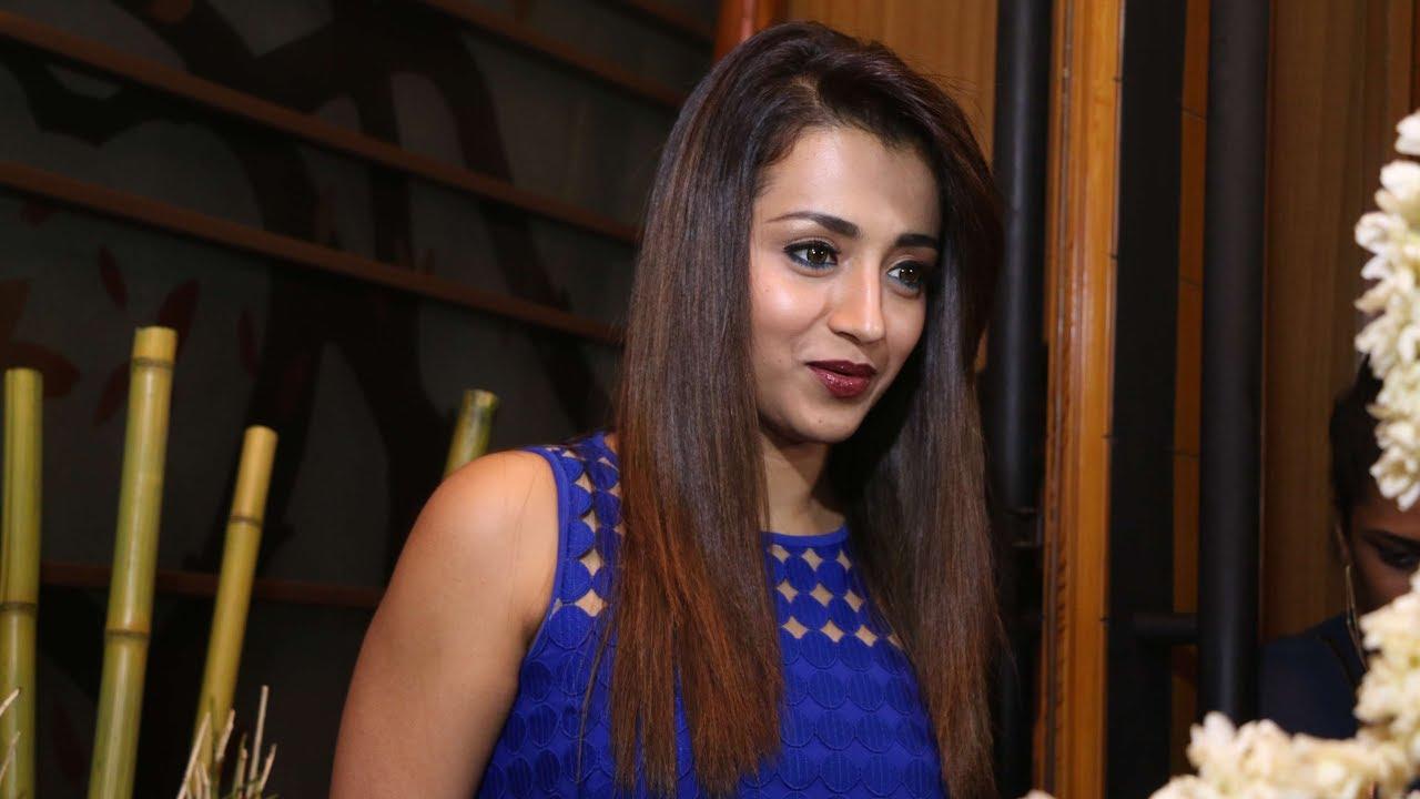 chennai actress trisha pussy