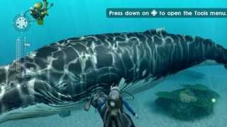 Let's Play Endless Ocean: Blue World, Episode 1: The Blue Tang Secret