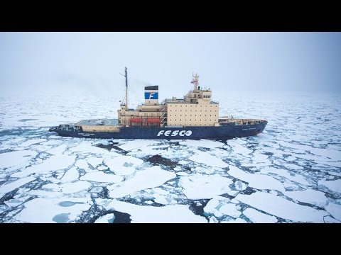 Tested Arctic: A Short Film