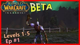The chillest World of Warcraft Classic BETA gameplay, ever. [CB 1]