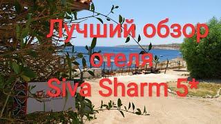 Египет Обзор отеля Siva Sharm 5 после карантина глазами любимых туристов