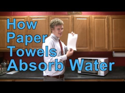 How Paper Towels Absorb Water | A Moment of Science | PBS