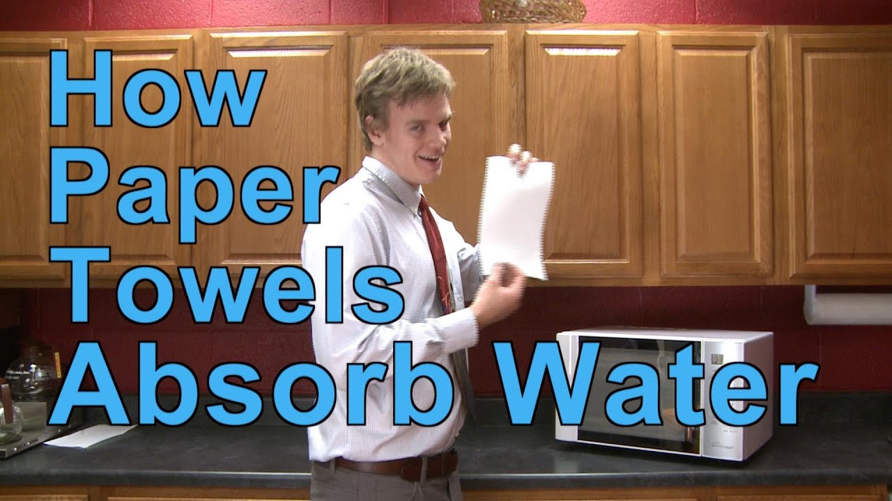 How Paper Towels Absorb Water | A Moment of Science | PBS - YouTube