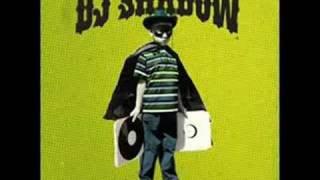 Dj Shadow - Hindsight
