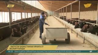 Оңтүстік Қазақстан облысынан Иран Ислам мемлекетіне жылына 20 мың тонна ет экспортталады