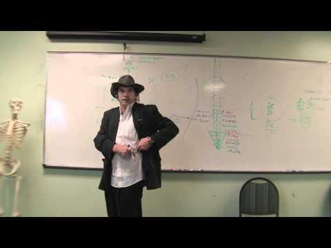 The Secret Code of Back Shu Points- Dr.Adam-Atman Acupuncture Seminar-1