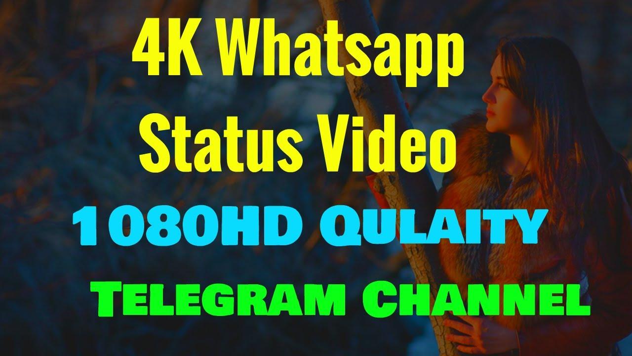 😍 20K Whatsapp Status Telegram Channel 😘  😍 Whatsapp Status ...
