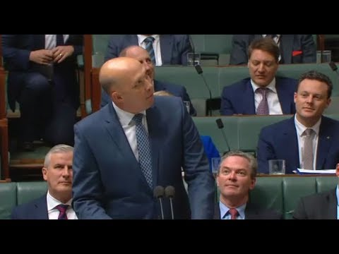 """Labor & the Greens don't like me,"" complains Peter Dutton to the press gallery"