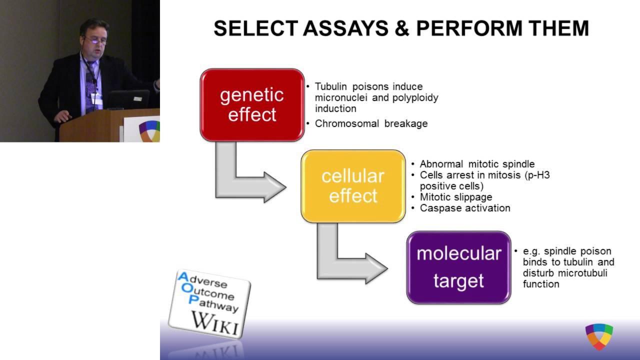 HESI AM2016: HESI Genotoxicity Committee–A 'Clean Sheet' approach to  genetox testing (Maik Schuler)