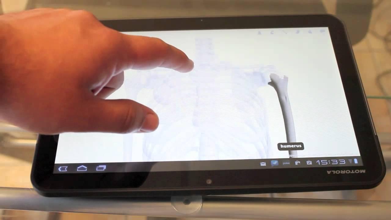 Google body: una nueva forma de estudiar anatomía - YouTube