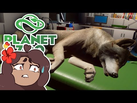 A BATTLE Between Wolves!! 🐺 Daily Planet Zoo! • Day 24