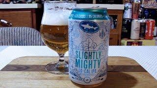 DogFish Head Slightly Mighty Lo-Cal IPA (4.0% ABV) IPA DJs BrewTube Beer Review #1230