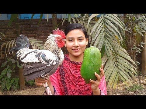 Chicken Kosha With Papaya | Bengali Style Recipe | Cooking By Street Village Food