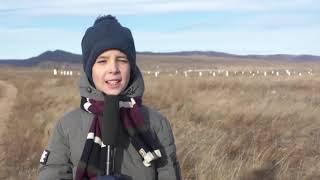 """""""Детское агентство новостей"""" - выпуск №27"""