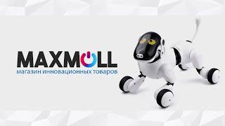 Радиоуправляемая собака - робот PuppyGo и HappyCow Smart Dog