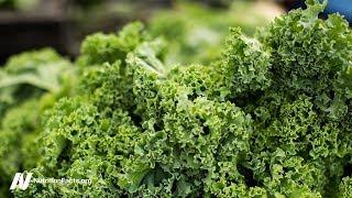 Výhody a nevýhody makrobiotické stravy