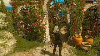 The Witcher 3- Ervas especiais cerejeira, flor de lotus e manjerição de nazair