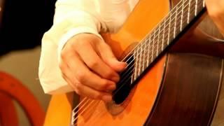 クラシックギター Gavotte / Roncalli (ガヴォット/ロンカッリ)