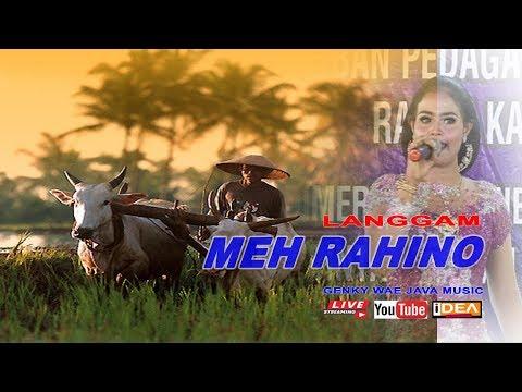 MEH RAHINO