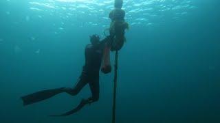 Ловим мидии в Черном море Крым.